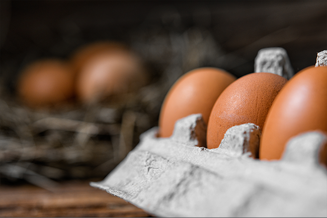 Edgeworth Client Secures Landmark Win in Federal Antitrust Case Alleging Conspiracy to Raise Egg Prices